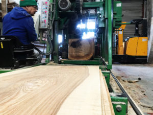 olive ash going into the tracksaw